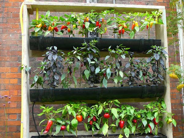 Raised Vegetable Garden Watering System