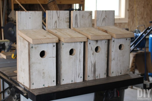 11 Cool Bluebird House Plans To Attract Them To Yard     The Self     Use One Board To Build A Bluebird House