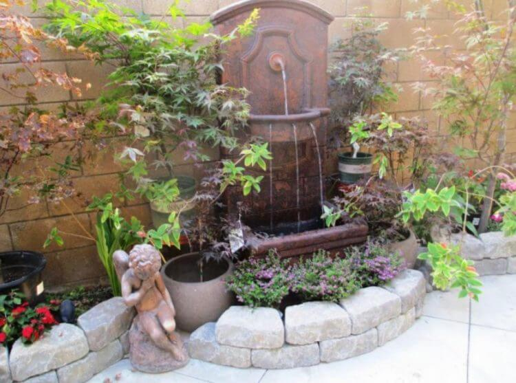 Outdoor Water Fountain Plants