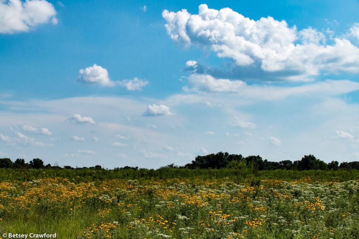 Missouri Prairies