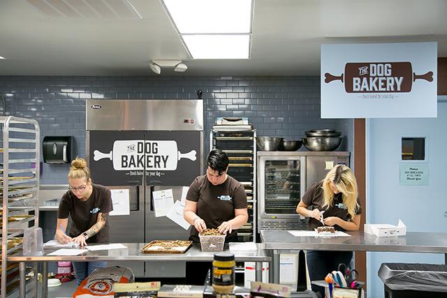 Best Kitchen Online Store