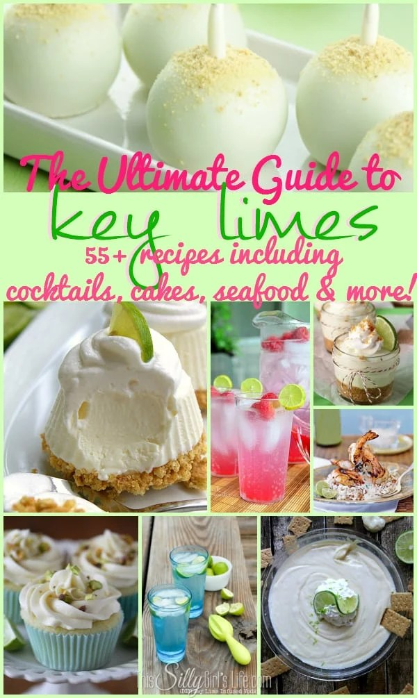 The Ultimate Guide to Key Limes: 55+ Recipes including cocktails, cakes, seafood and more!