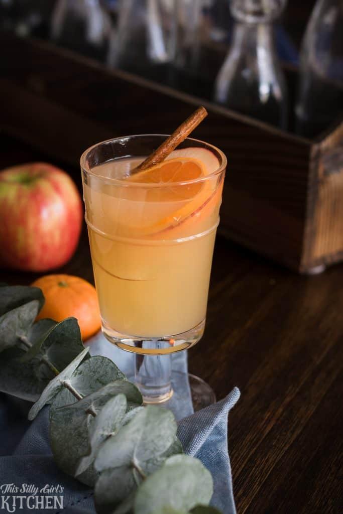Honeycrisp Apple Cider Rum Punch side view on table
