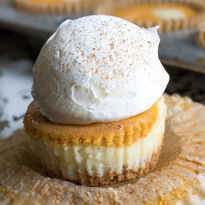 Square photo of Pumpkin Cheesecake Cupcake topped with whipped cream.