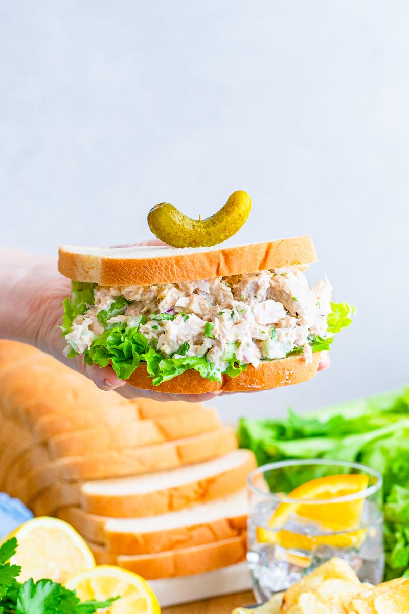 Hand holding Tuna Sandwich