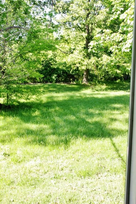 Gatehouse-backyard