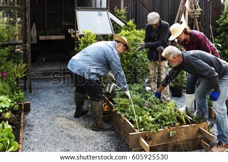 Group People Gardening Backyard Together Stock Photo ...
