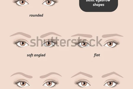 Images of eyebrows shapes full hd maps locations another world eyebrows for your face shape high and soft arched eyebrows shapes for round face picture see more eyebrow diagrams that will explain everything to you ccuart Choice Image