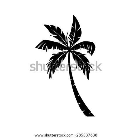Palm Trees Vector Stock Vector 285537638 Shutterstock