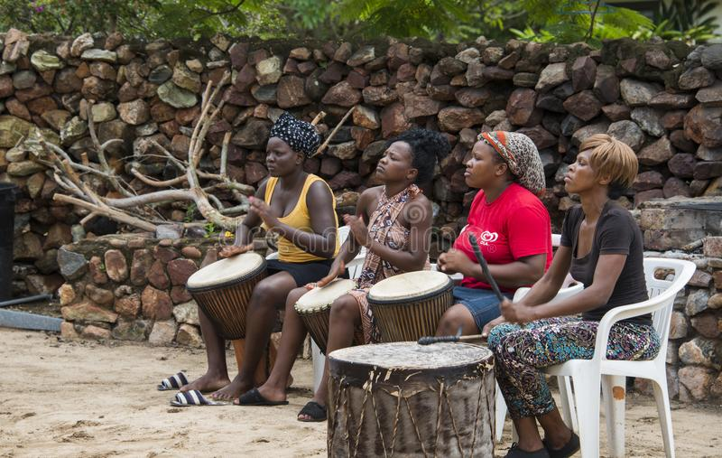 Woman playing bongo stock photo. Image of model, player ...