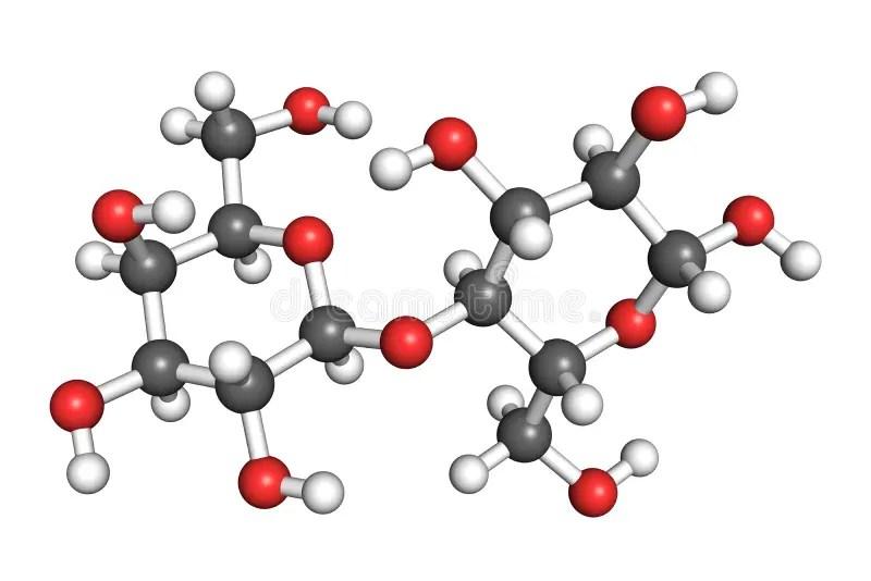 Lactose molecule stock illustration. Illustration of ...