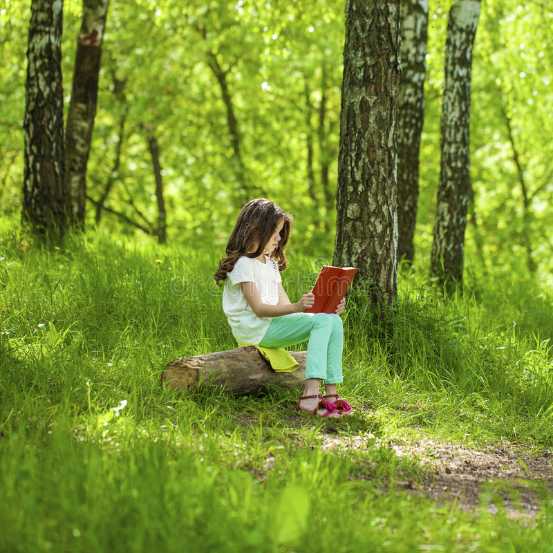 Tree Blog Sitting