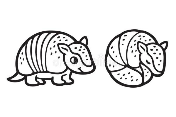 how to draw an armadillo # 47