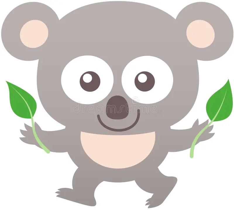 Cute Koala Smiling And Holding Eucalyptus Leaves Stock ...