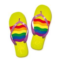 a36da416781c66 Rainbow Flag Flip Flops Vector Illustration Stock Vector