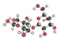 The Molecule Of Lactose (milk Sugar) Stock Illustration ...