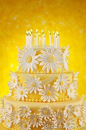 Daisy Birthday Cake Stock Photo Image 22028730