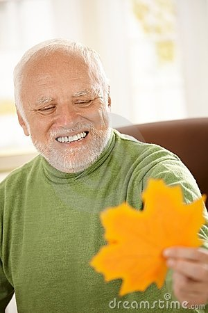 Smiling Old Man Looking At Yellow Leaf Royalty Free Stock