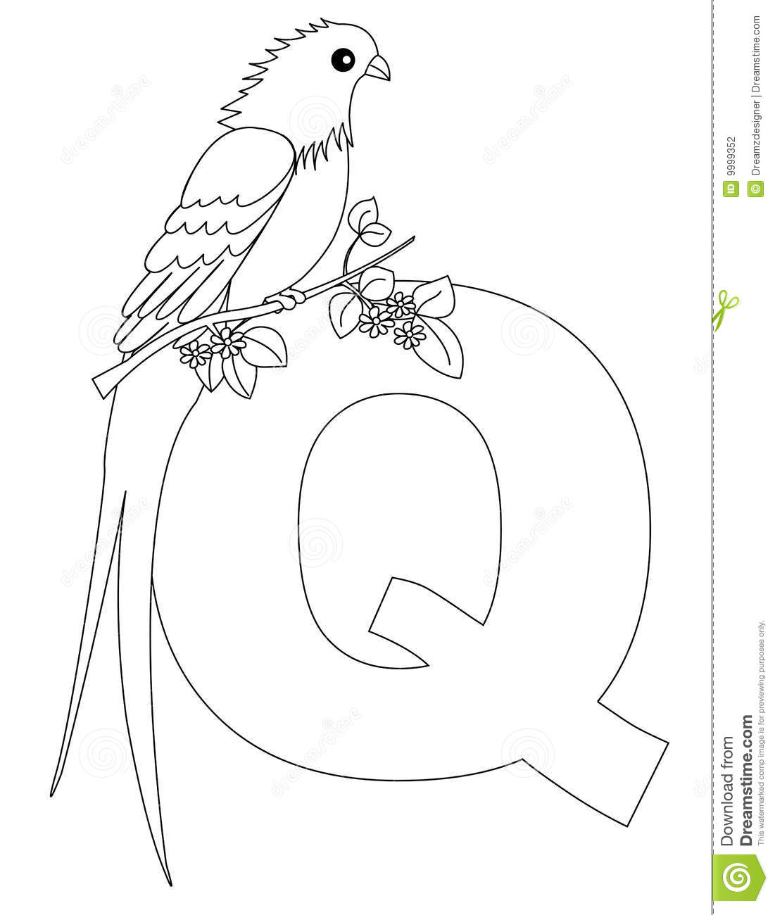 Animal Alphabet Q Coloring Page Stock Vector Illustration Of