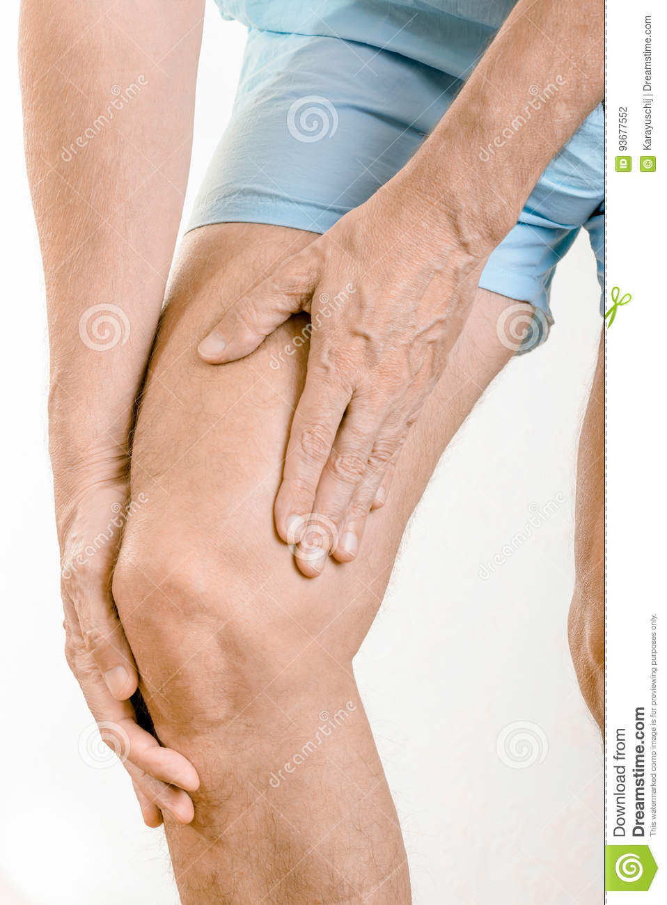 Knee Joint That Make The Bones And Muscles
