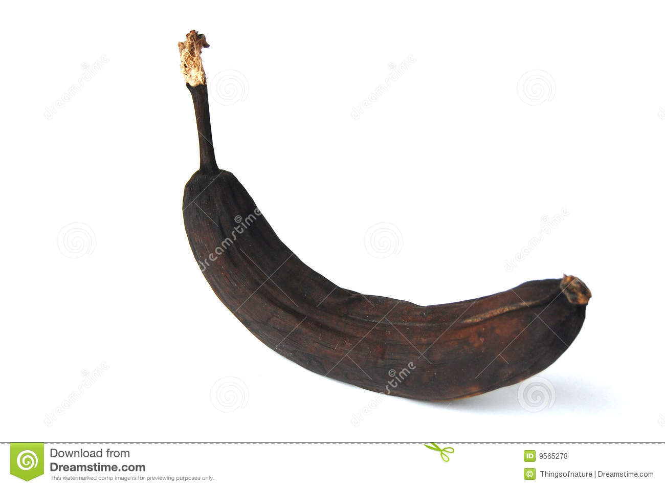 People Black Banana And