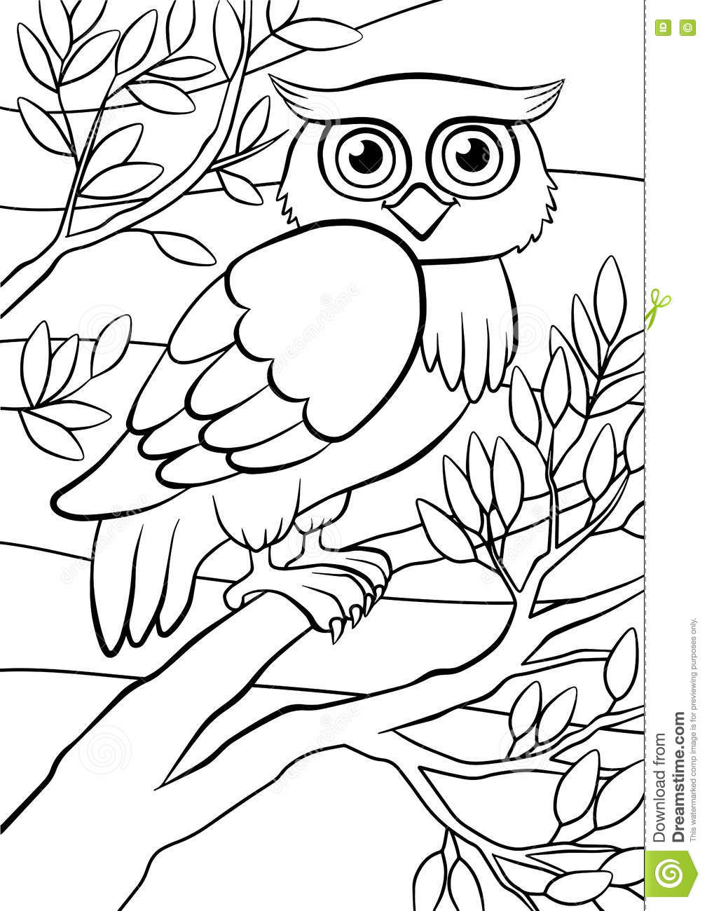 Coloring Pages Birds Cute Owl Stock Vector Image 71205097