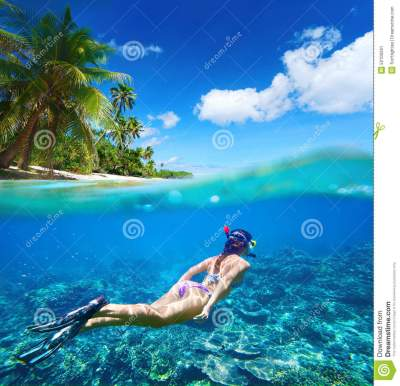 Coral Reef In Tropical Sea On A Background Of Green Island ...