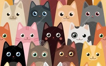 Cartoon Cat Wallpaper Hot Trending Now