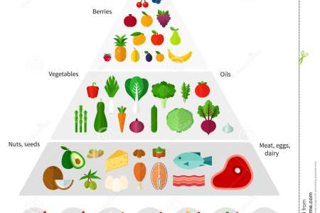 the simple vegan food pyramid vegan food pyramid mind map for science year watermelon food the food pyramid revisited with a mind map many other countries
