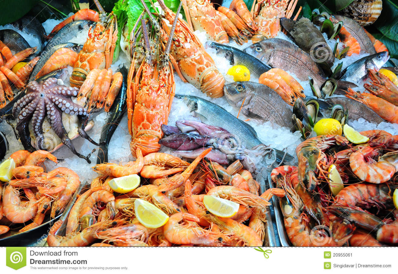 Fresh Seafood Outlets Gold Coast