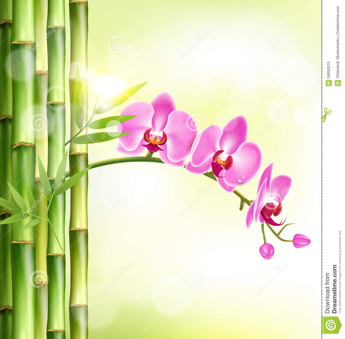 Pink Flowers Bamboo