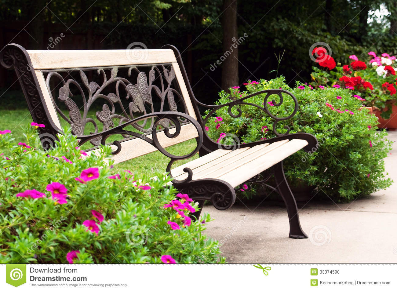 Park Bench Stock Photo Image Of Wood Outdoors Flowers
