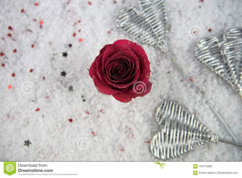 Christmas Or Valentine Romantic Winter Season Photography Image Of     Download Christmas Or Valentine Romantic Winter Season Photography Image Of  Red Rose Flowers In Snow With