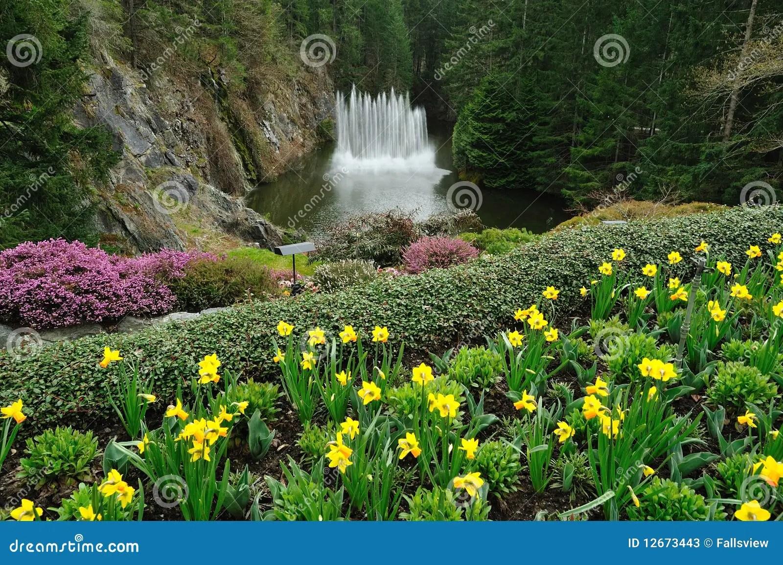 How Plant Pond Plants