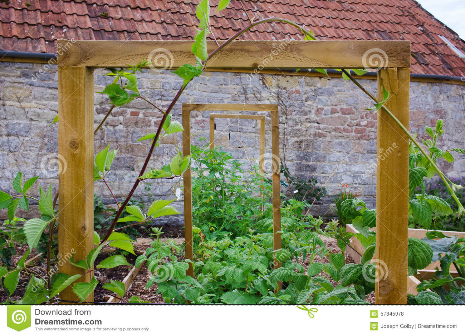 Raised Flower Garden Plans