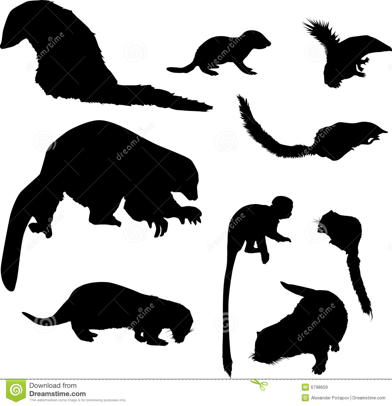 Squirrel Drawing Line Monkey Black Animal