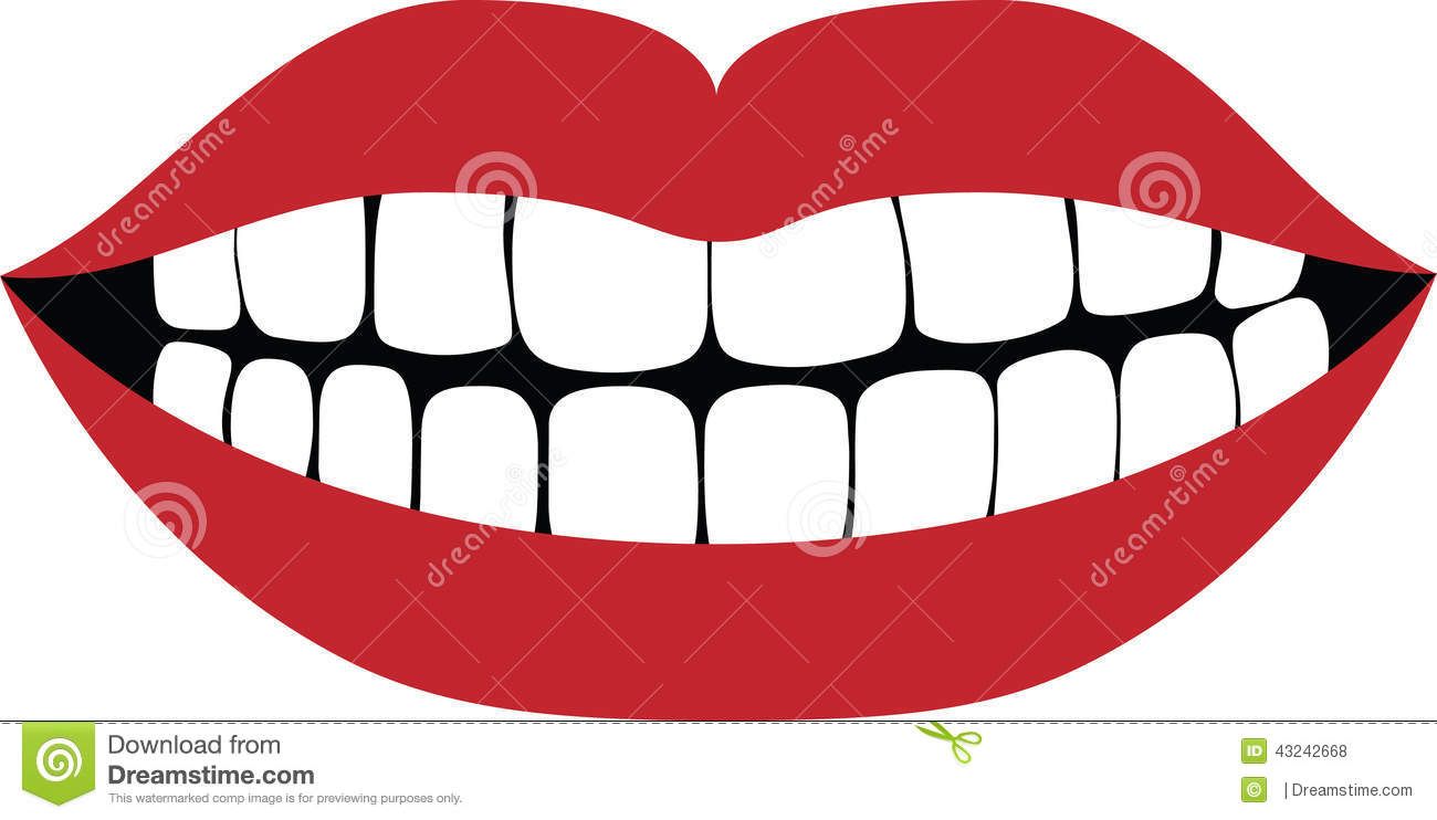 How Are Teeth Numbered Mouth
