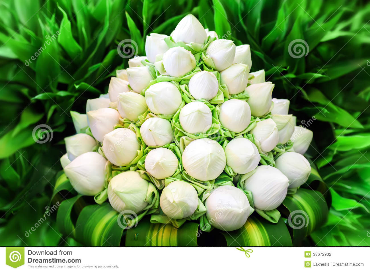 White Lotus Flowers In Bouquet Stock Photo   Image of invitation     White lotus flowers in bouquet