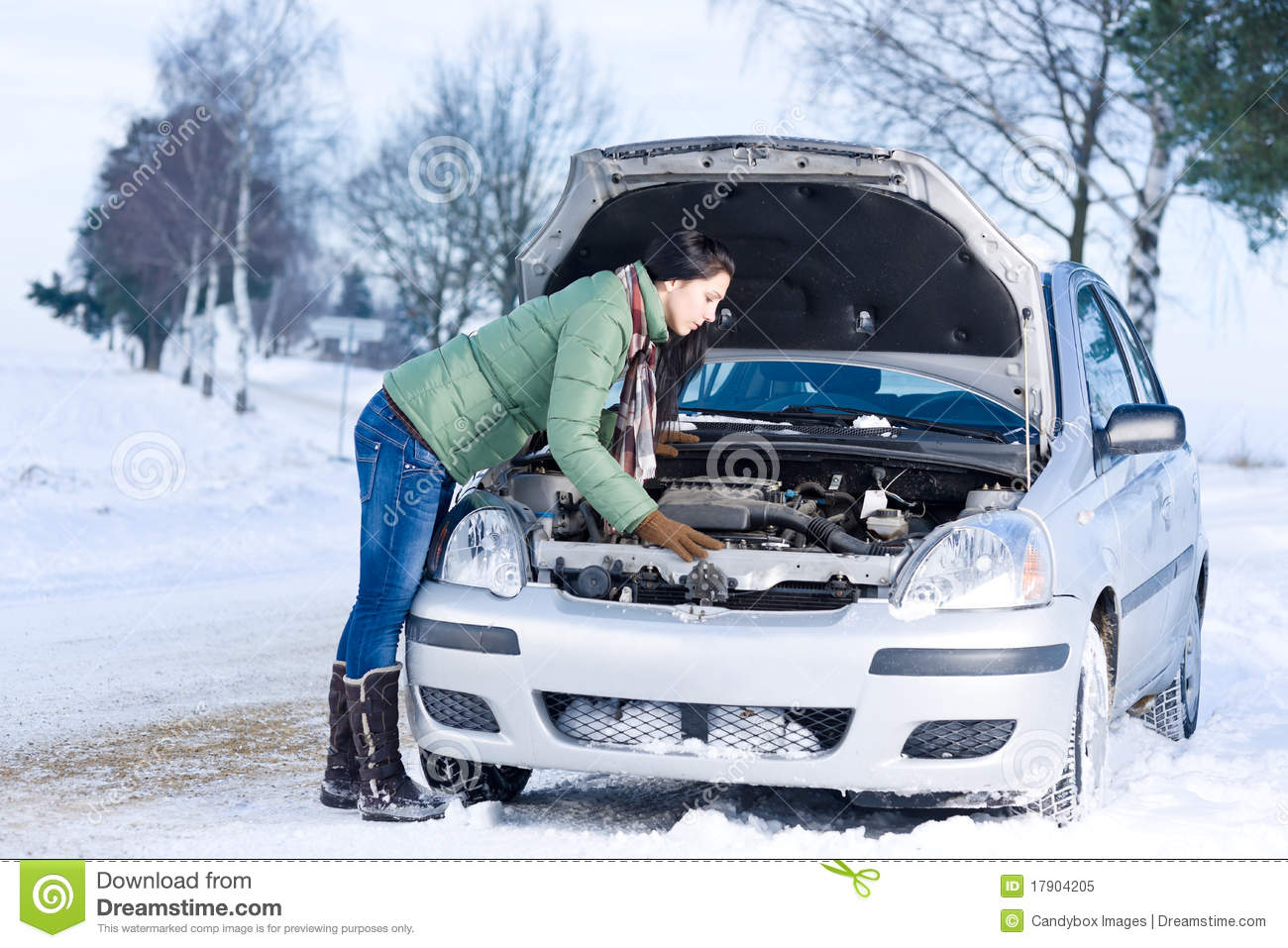 Winter Car Breakdown Woman Repair Motor Stock Image