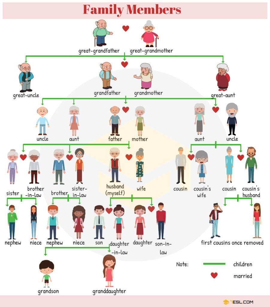Esl Family Relationship Chart