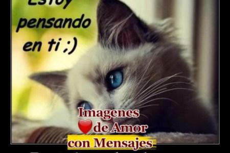 Imagenes De Estoy Pensando En Ti Para Facebook picture gallery