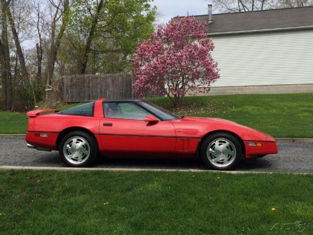 1989 Z51 Corvette Skirts
