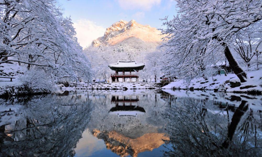 Paket Tour ke Korea Selatan 7 Hari Februari / Musim Dingin ...