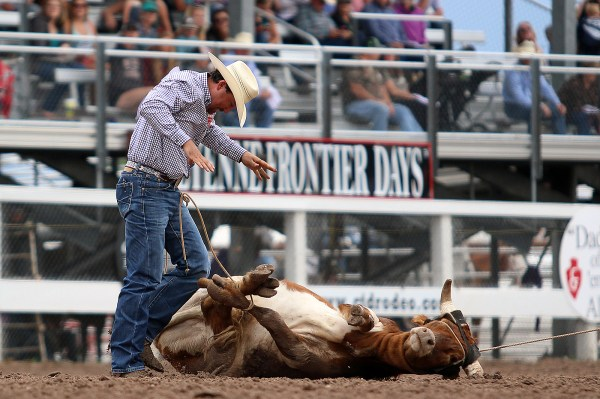 Cheyenne Frontier Days 2019 Just Got More Exciting With Pbr