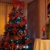 Navidad 2016 (2)
