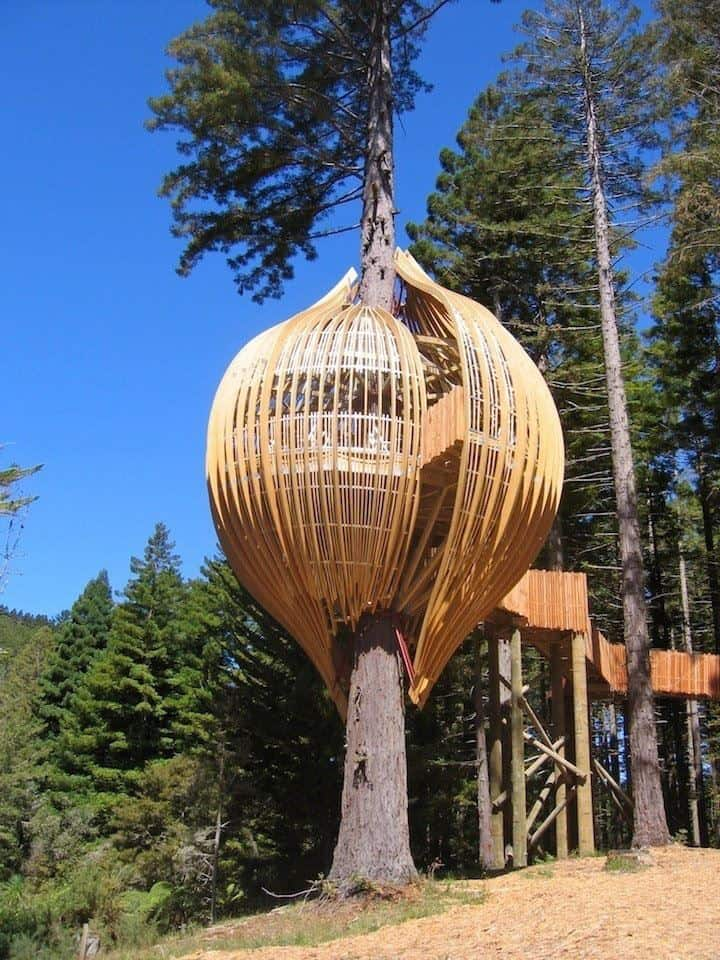 Restaurant Zealand Yellow New Treehouse