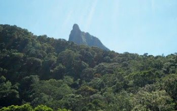 Pico do Corcovado – Ubatuba