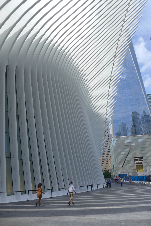 Tribeca Citizen Behold The World Trade Center Oculus