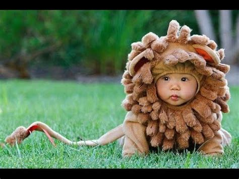 top 10 cutest baby halloween costumes youtube