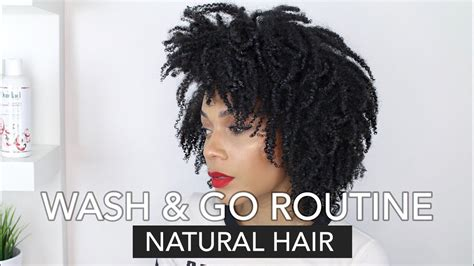 Natural Hair Wash Go Regimen.html